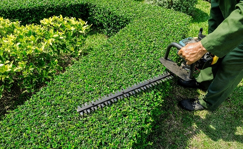 Landscape Maintenance Miami Fl